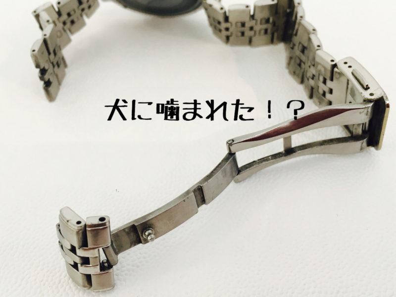 腕時計を犬に噛まれた。